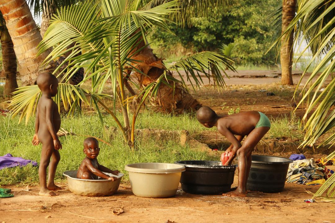 Misola Niger